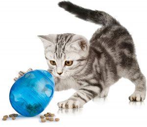 balle distributeur croquettes chat